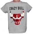 Měnící tričko kr.rukáv - chlapecké - býk - sv.šedé 2