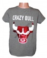 Měnící tričko kr.rukáv - chlapecké - býk - tm.šedé